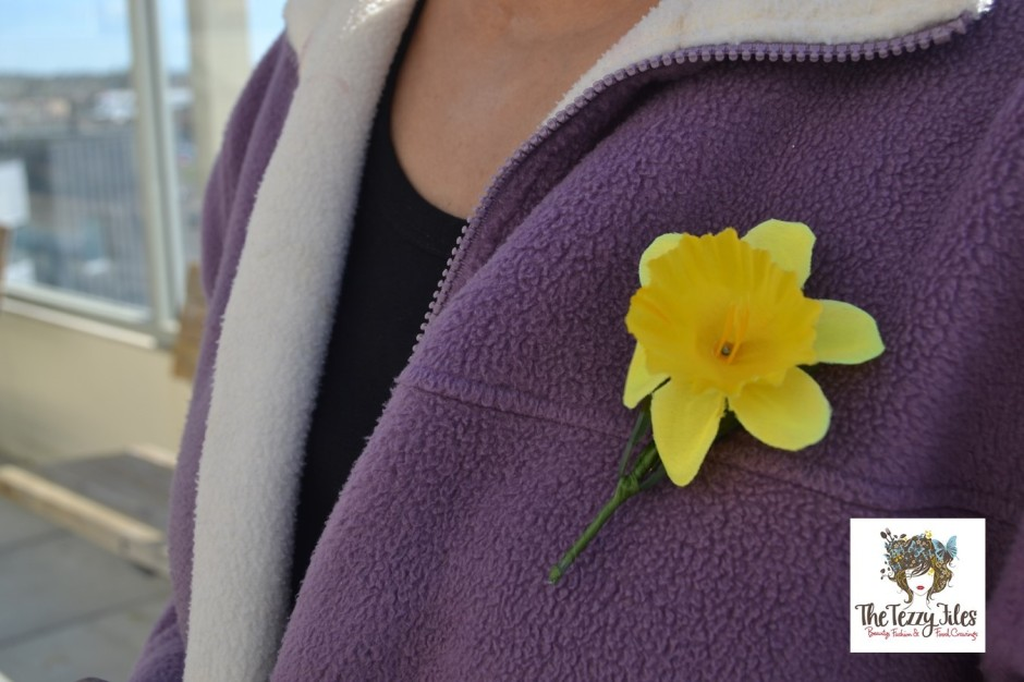 daffodil day new zealand cancer society 28th august 25th anniversary donate (1)
