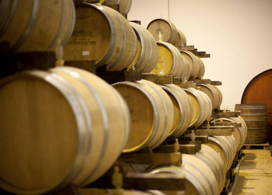 barrels in winery