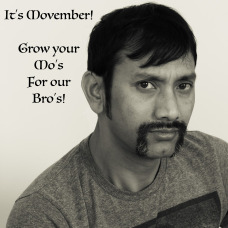 donate for movember grow a mo for your bro november prostrate cancer donation research