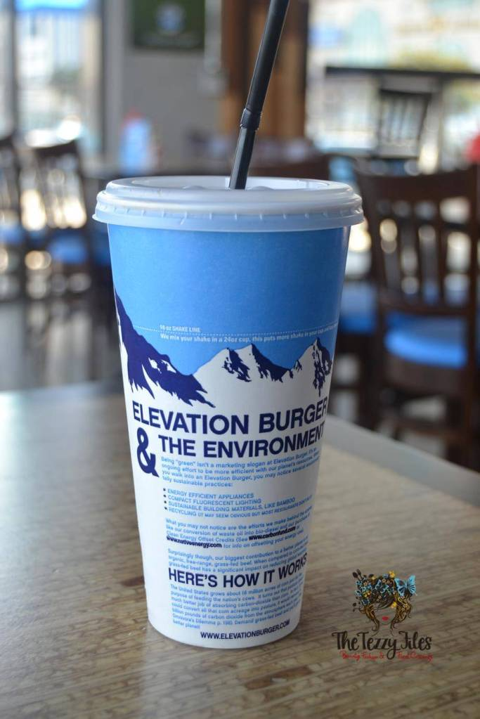 Elevation Burger Majaz Waterfront Sharjah Review (6)