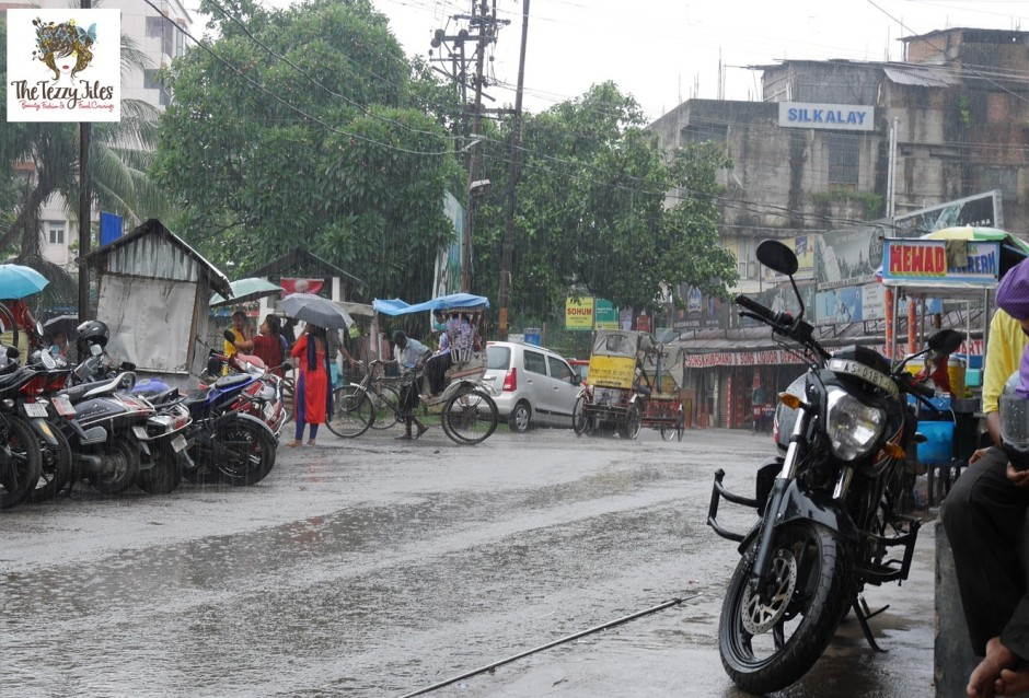 Guwahati Assam India Monsoons July 2016 by The Tezzy Files Dubai Travel Blogger (10)