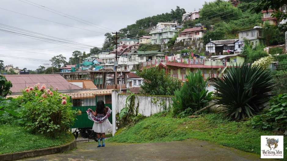 Shillong virtual tour by The Tezzy Files Dubai Travel lifestyle blog blogger Mghalaya Scotland of the East Rock Capital of India Photography Panasonic Lumix (10)