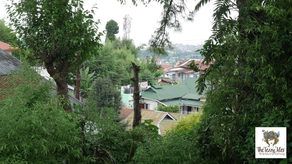 An endless sea of tin roofs curtained by the greenery of pine trees.
